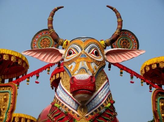 Suruchi Sangha New Alipur 3