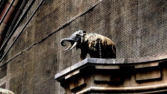elephant-gillander-house-facade-kolkata